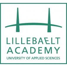 Lillebaelt Academy